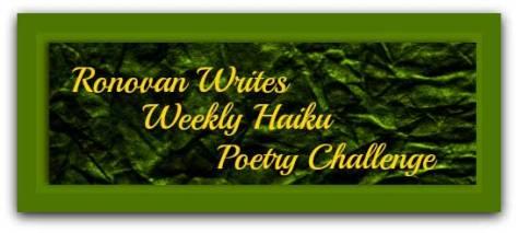 ronovan-writes-haiku-challe