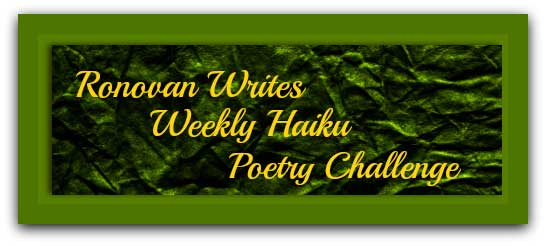 #Haiku prompt challenge: Broken & Over