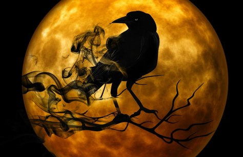 raven-infront-of-moon